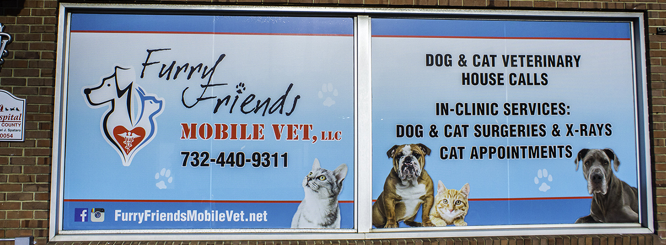 Welcome to Furry Friends Mobile Vet!